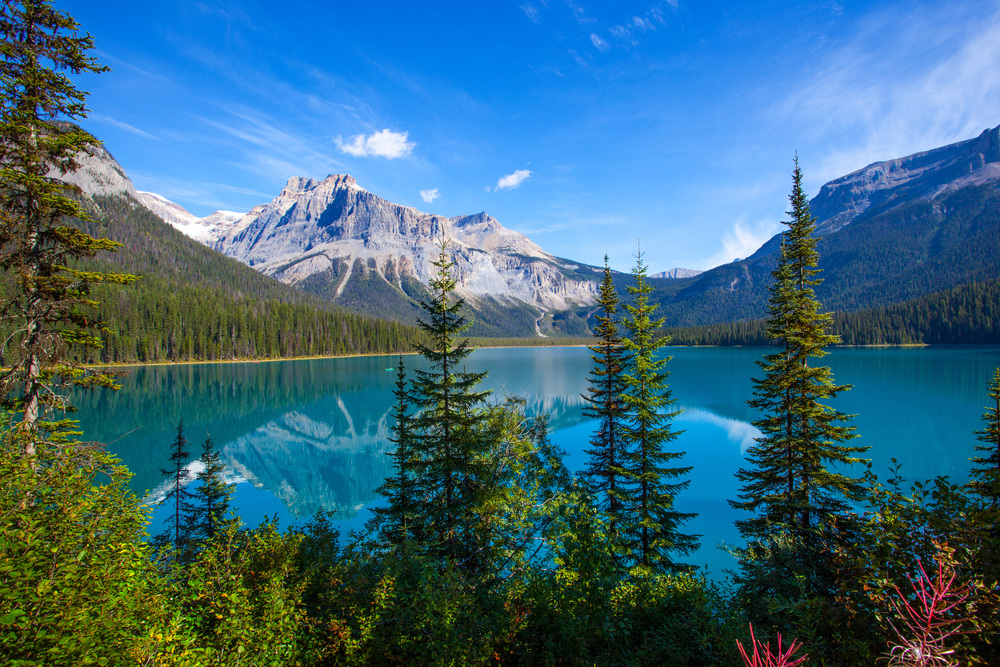Best Restaurants In Banff And Lake Louise