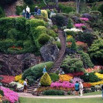 Butchart Gardens. Flowers and shrubs with staircase