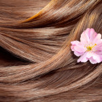 Hair care concept: beautiful healthy shiny hair with highlighted golden streaks and a sakura flower