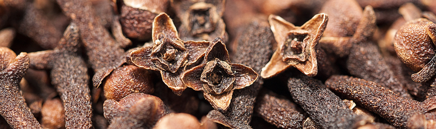 Cloves as background