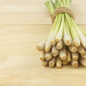 Fresh lemongrass -herb vegetable on wood background used to make lemongrass oil