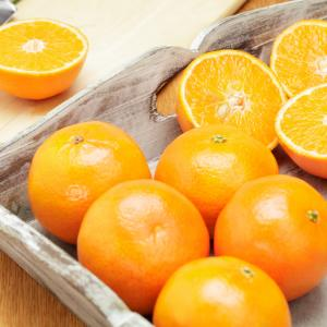 Oranges - Citrus Fruit