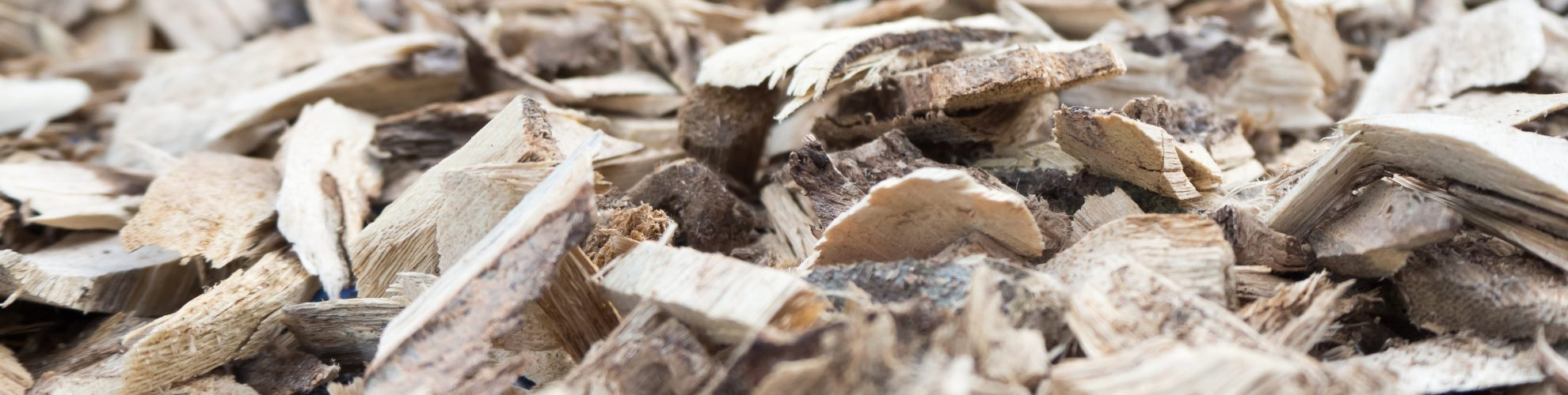 Dry barks for making herbs.