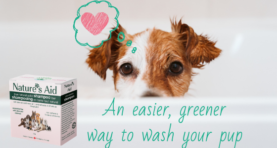 natural solid shampoo bar for pets